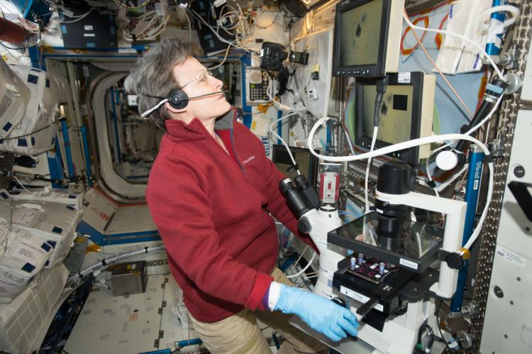 Astronaut Peggy Whiston using the BioServe Microscope on ISS