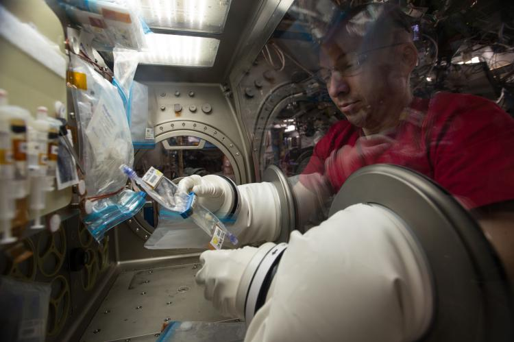 NASA astronaut Randy Bresnik working with TPK hardware during the Lung Tissue experiment