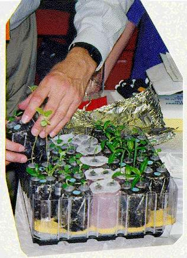 Loading PGBA with seedlings prior to flight