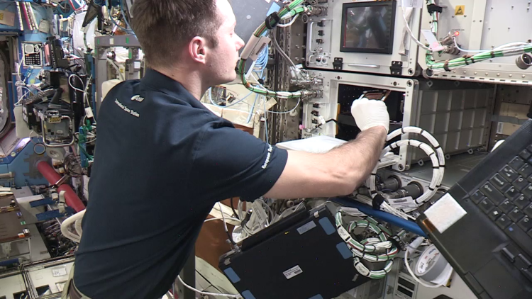 ESA astronaut Thomas Pesquet inserting a BioCell into SABL during the OsteoOmics experiment