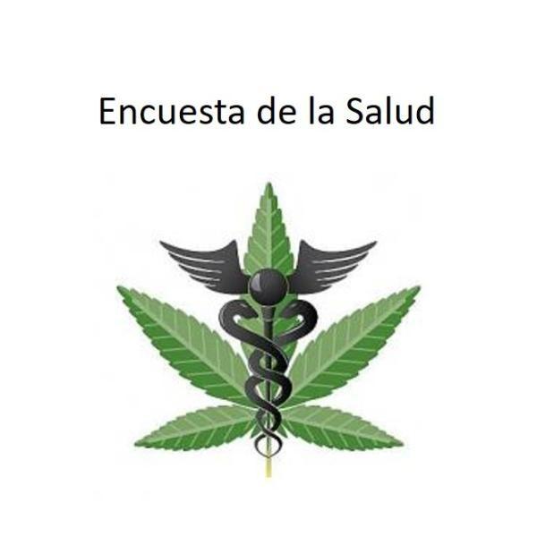 cannabis in spanish