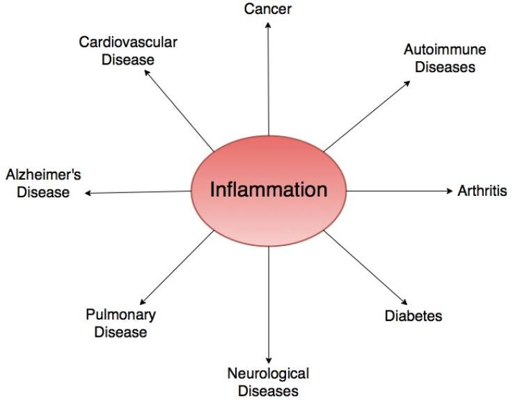 cannabis cbd cannabidiol inflammation
