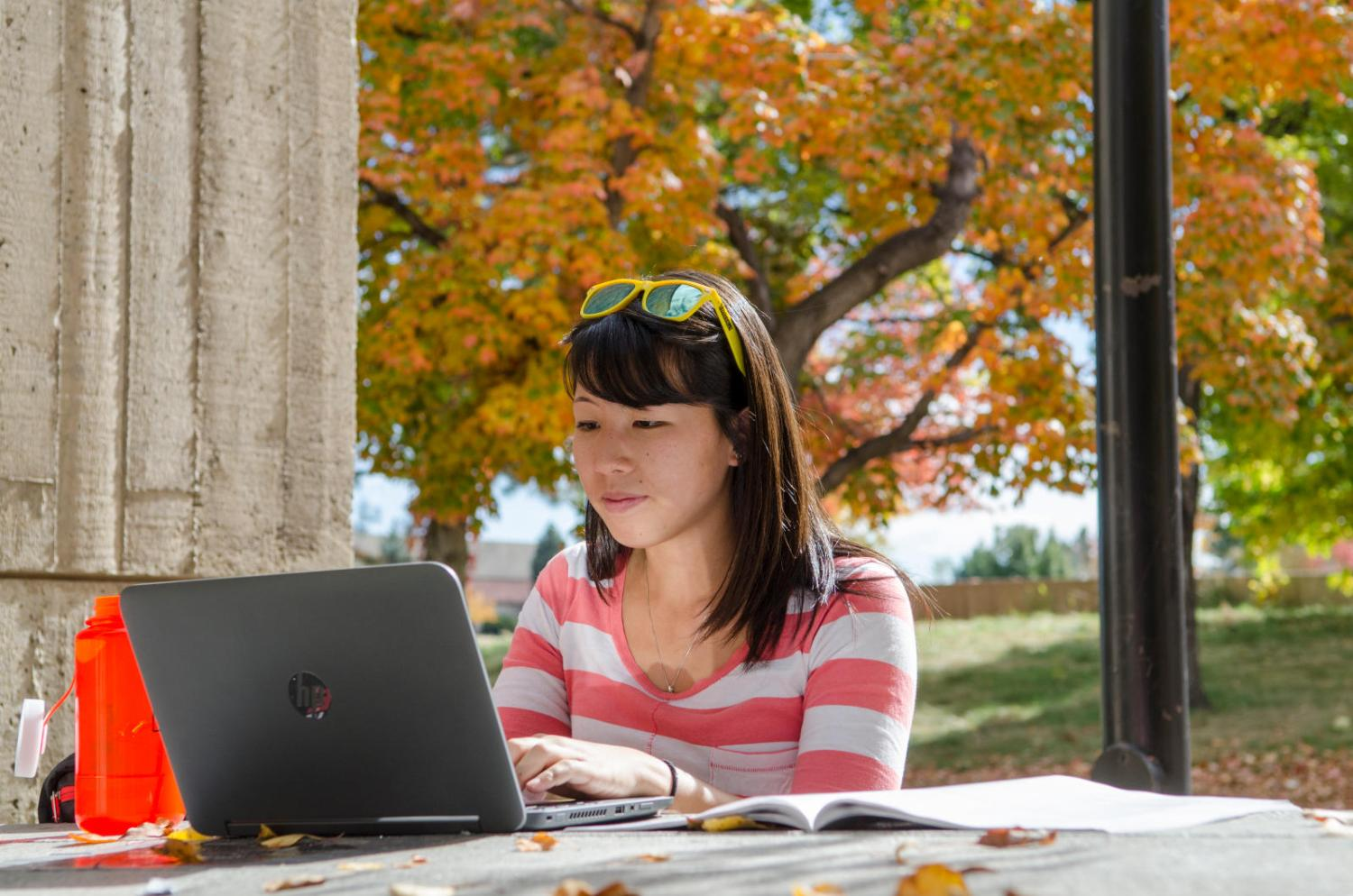 Student on laptop with autumn tree in background.