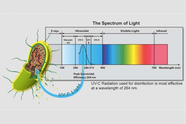 UV Spectrum graphic