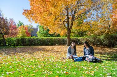 2 students sit under trees in autumn