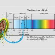 spectrum of light graphic