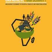 How Sub-Saharan African Can Achieve Food Security book cover