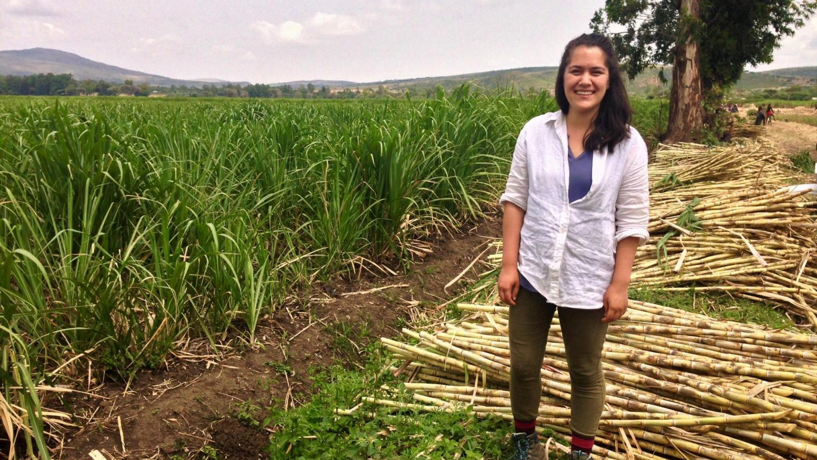Katie Chambers standing in a field with cut bamboo.