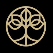 Crown Wellness Institute Logo
