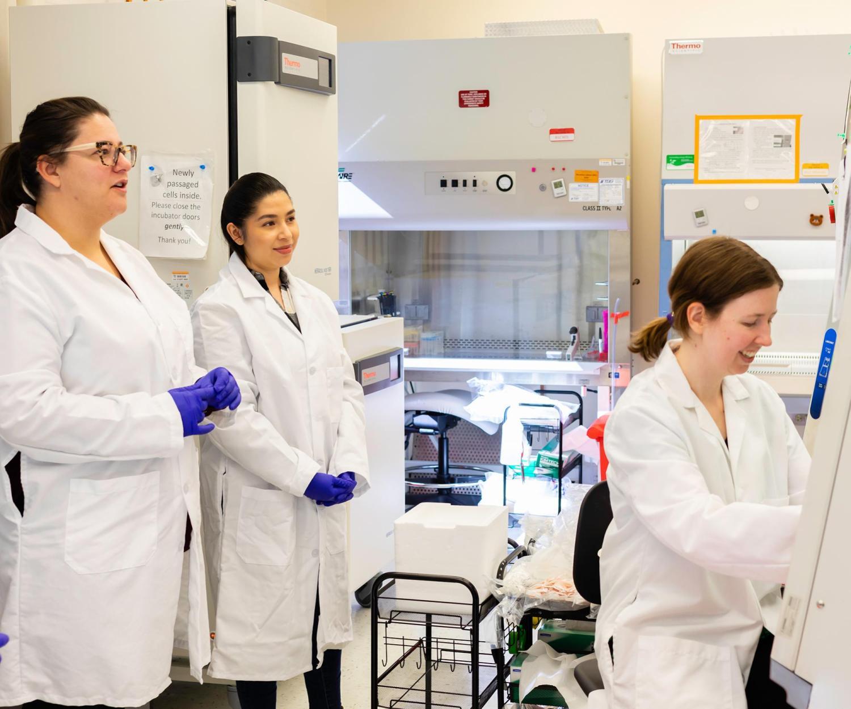 iPSCs-stem-cells-researchers-training