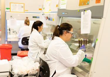 stem-cells-training-researchers-human-iPSCs