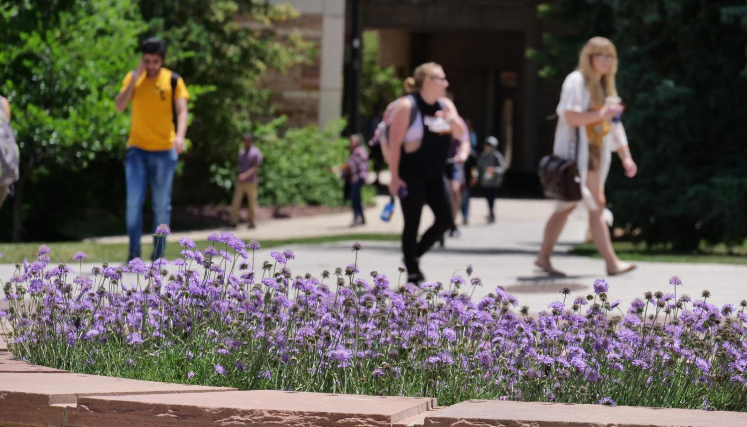 Students walk outside on campus with flowers blooming