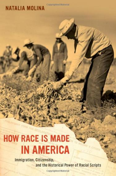 Immigration, Citizenship, and the Historical Power of Racial Scripts, University of California Press, 2014