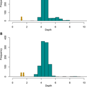 Examples of contig depth distributions from (A) Usnea cornuta and (B) Heterodermia leucomelos used to estimate single‐copy depth of the mycobiont nuclear genome that show the cystobasidiomycete contigs (yellow arrows) fall near, or within, one order of magnitude of the distribution of the 1000 largest contigs in the metagenome (blue bars).