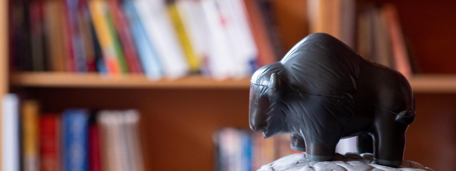 buffalo on brain, in front of books