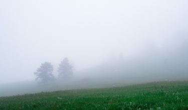 landscape foggy