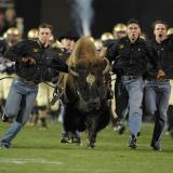Ralphie V storms the field with her handlers