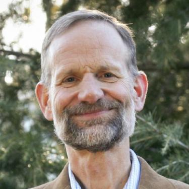 Professor Michael F Toney