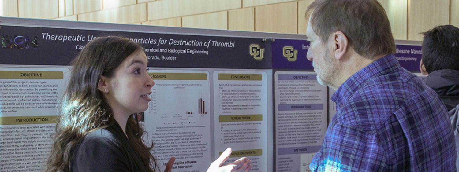 A student discusses her research with a professor