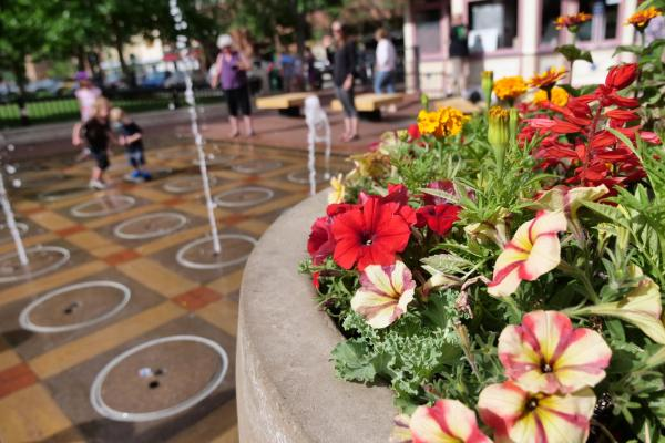 Flowers and a fountain on Pearl Street