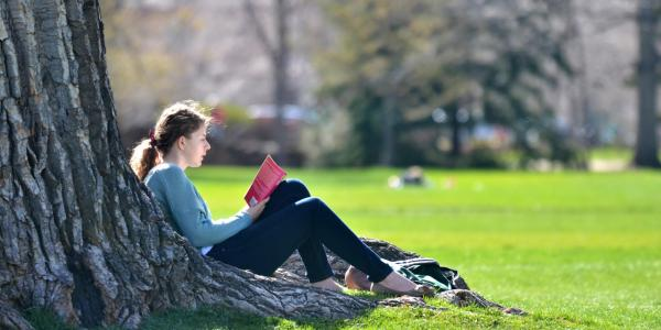 Student reading against a tree