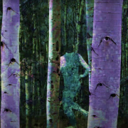 a group of Aspen trees with the eyeballs in the bark and a dancer running through them.