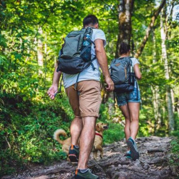 couple hiking in the woods with dog