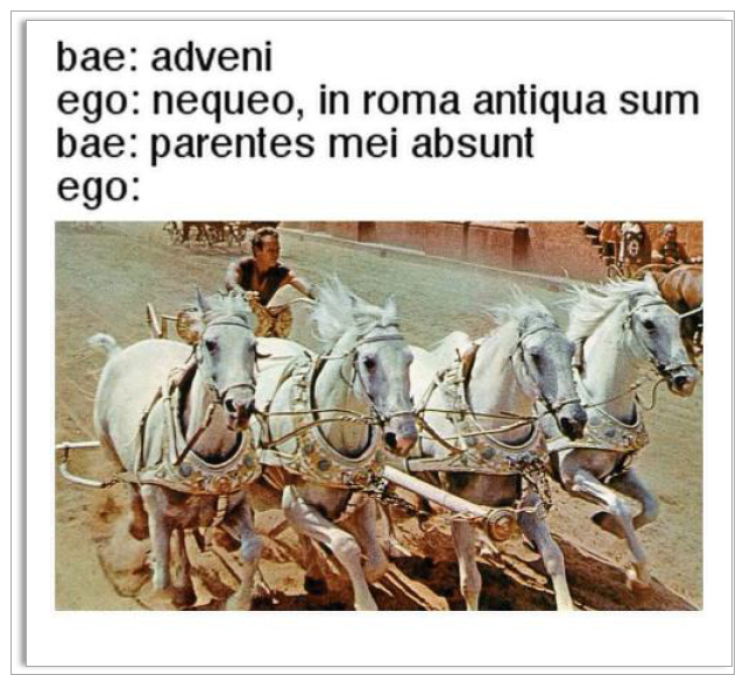 Roman driving a chariot