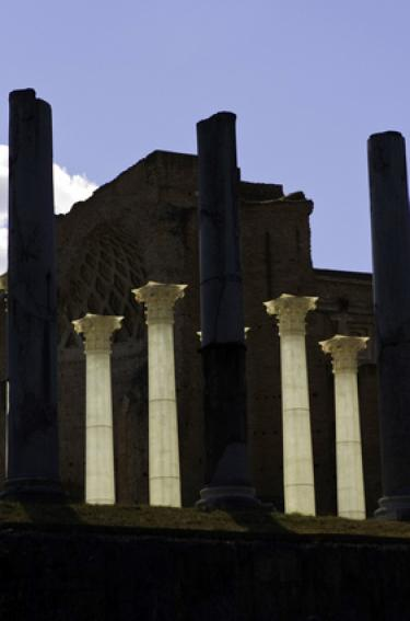 The ancient columns of Venusroma