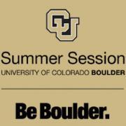 Summer Session Logo