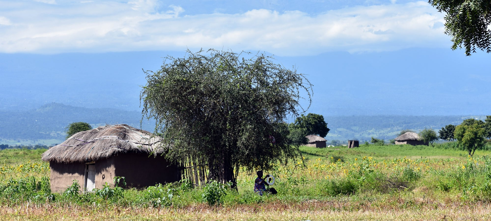 The house where Mollel grew up in her village in Tanzania.