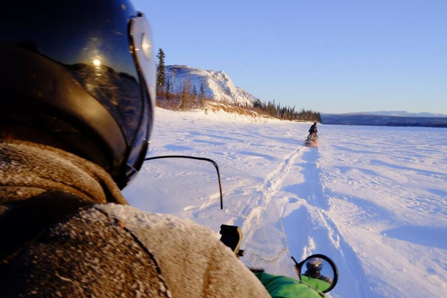 Dogs leadthe way on the 1,000-mile Yukon Quest sled dog race.
