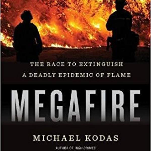 Megafire book cover