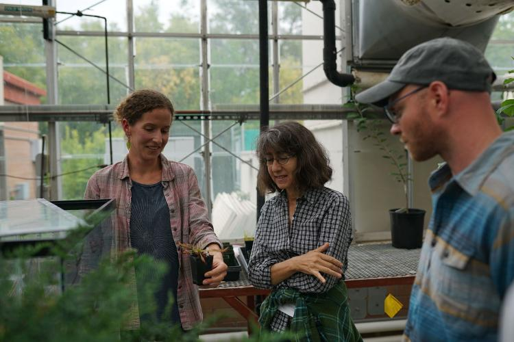 Additon, Royte and Scripps fellow Stephen Miller examine one of the many plants at the greenhouse.