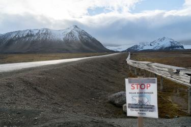 A cautionary sign at the outskirts of Ny-Älesund.
