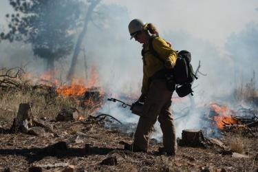 A firefighter builds a fire line with a drip torch at Heil Valley Ranch prescribed burn in 2014. Photo by Michael Kodas.