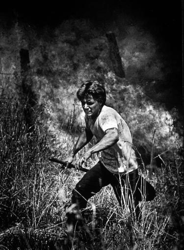 Kodas' earliest wildfire photograph of an inmate fighting a wildfire at a maximum-security prison.