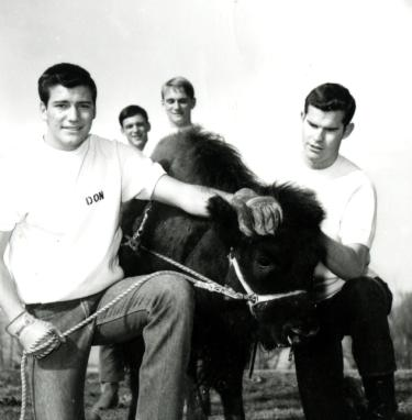 Ralphie I and handlers