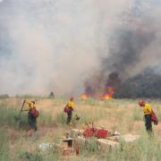 Wildfires thumbnail