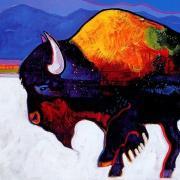 Buffalo art