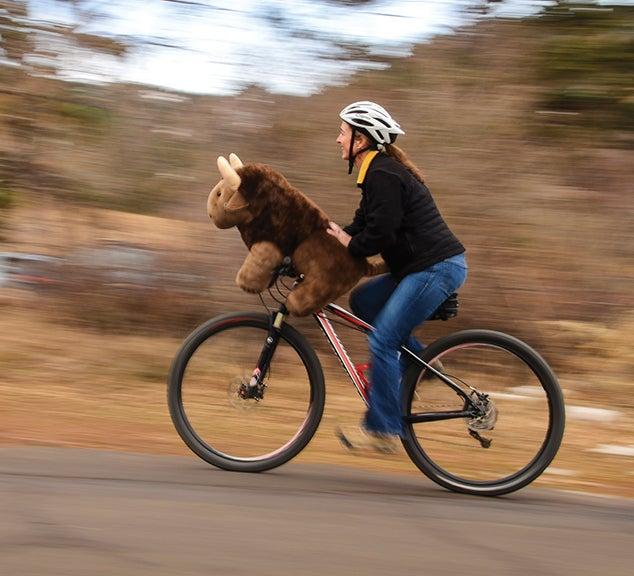 Woman and stuffed Buff ride a bike