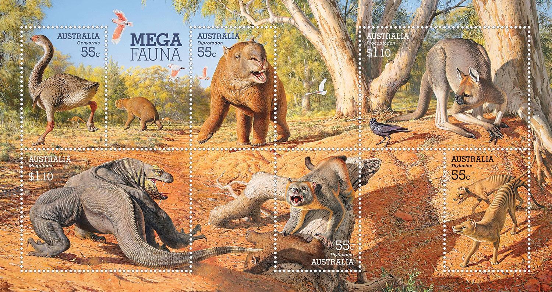 australian wildlife illustration