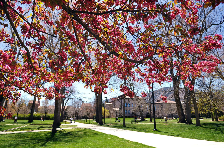 Spring scenic