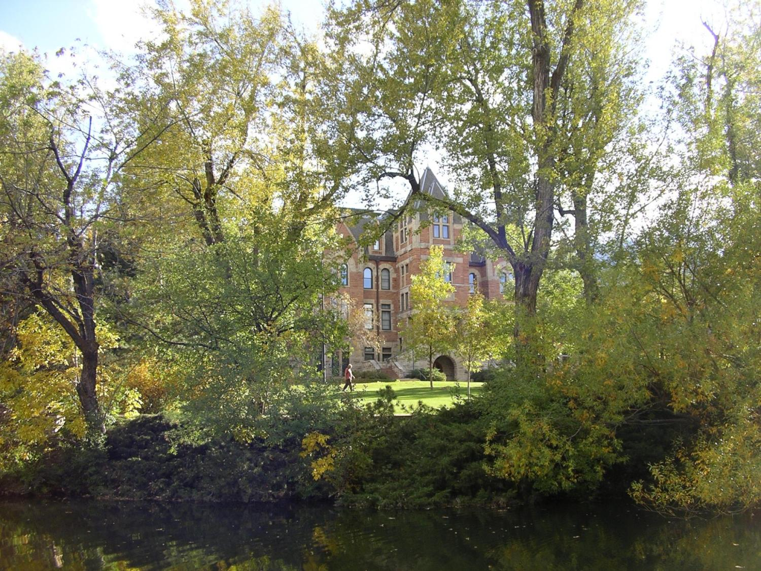 Photo of Hale Building through the trees
