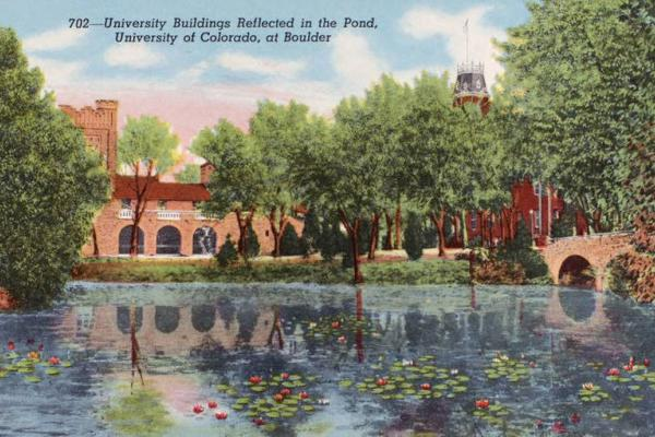 Varisty Pond Postcard