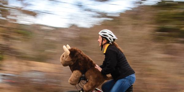 woman and buffalo ride bike
