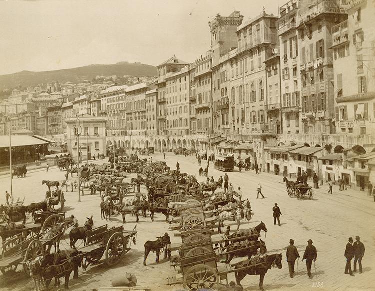 city scene with horses