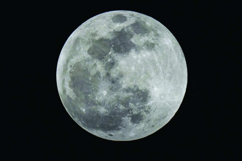 Wolf Blood Moon 1