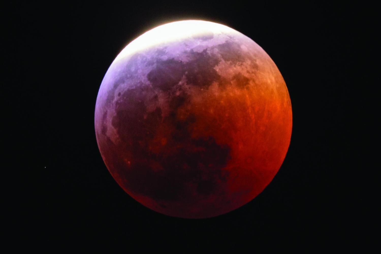 Wolf Blood Moon 4