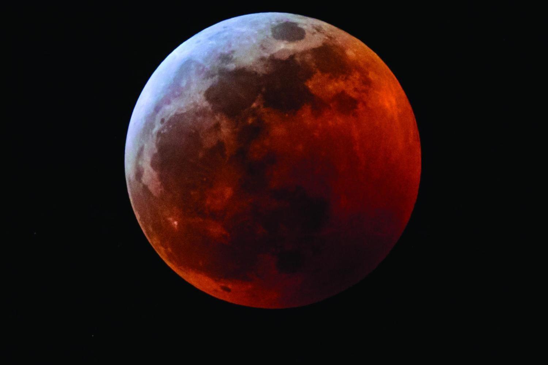 Wolf Blood Moon 3